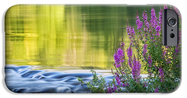 Connecticut Landscape iPhone Cases - Summer Reflections iPhone Case by Bill  Wakeley