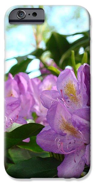 Summer Rhodies Flowers Purple Floral art Prints iPhone Case by Baslee Troutman