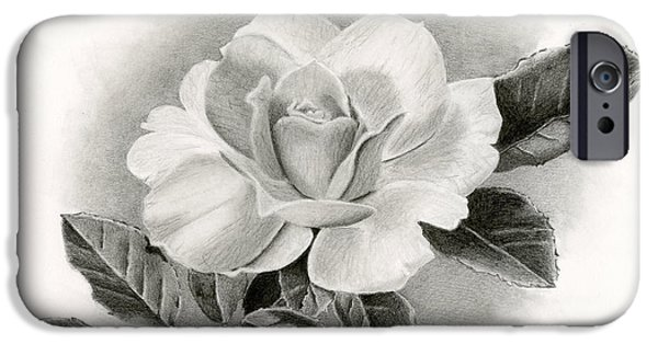 Sarah Batalka Drawings iPhone Cases - Summer Rose iPhone Case by Sarah Batalka