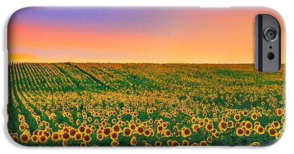Botanical Photographs iPhone Cases - Summer Slumber iPhone Case by Kadek Susanto