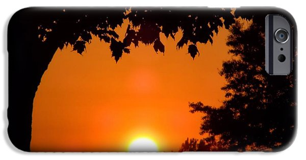 Central Il iPhone Cases - Summer Sunrise Right Side iPhone Case by Thomas Woolworth