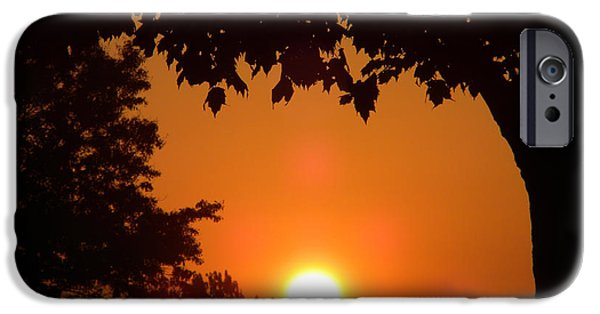 Central Il iPhone Cases - Summer Sunrise iPhone Case by Thomas Woolworth