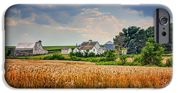 Nebraska iPhone Cases - Summer Wheat - Nebraska Farm iPhone Case by Nikolyn McDonald