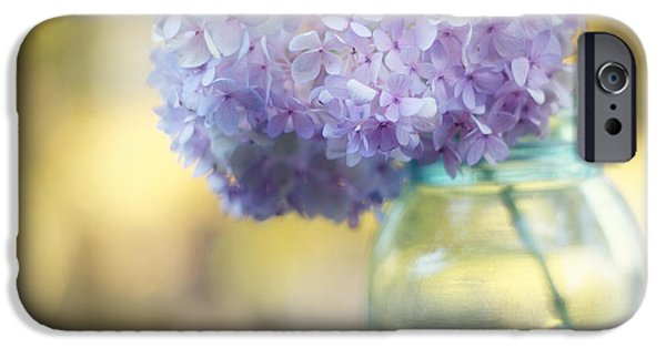 Floral Photographs iPhone Cases - Summers End iPhone Case by Amy Tyler