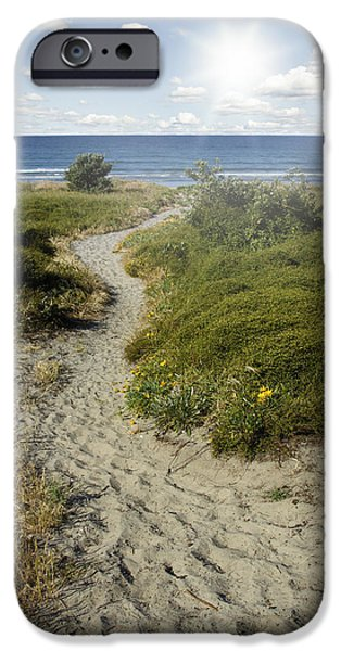 Pathway iPhone Cases - Summertime walk iPhone Case by Les Cunliffe