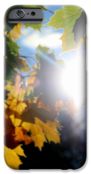 Unset iPhone Cases - Sun Beam  iPhone Case by Neal  Eslinger