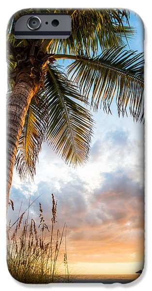 St. Petersburg iPhone Cases - Sun Coast Beauty iPhone Case by Clay Townsend