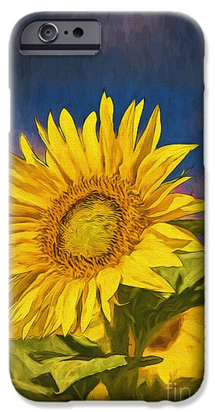 Abstract Digital Pyrography iPhone Cases - Sun Flower iPhone Case by Mauro Celotti