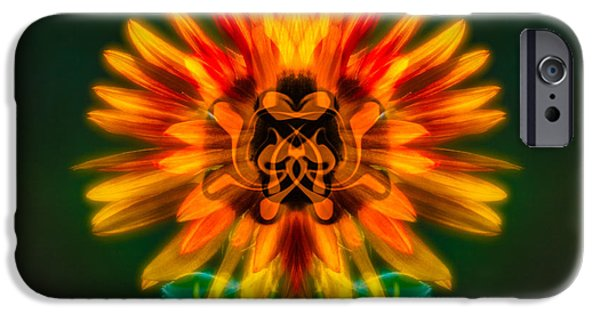 Alga iPhone Cases - Sun Flower Rising iPhone Case by Omaste Witkowski