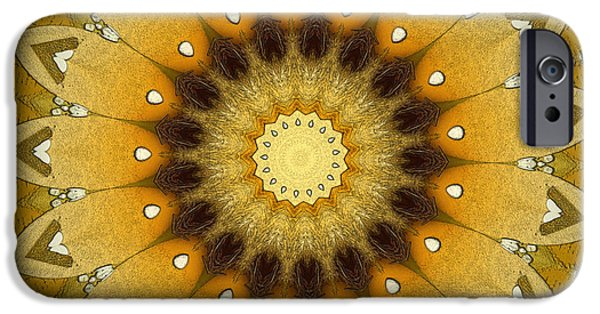 Repetition iPhone Cases - Sun Kaleidoscope iPhone Case by Wim Lanclus