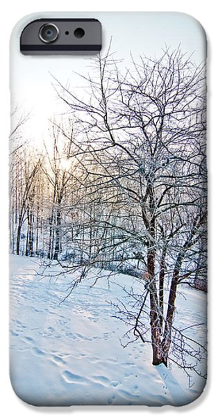 Surrealism Pyrography iPhone Cases - Sun Over A Snowy Day iPhone Case by Shirley Tinkham