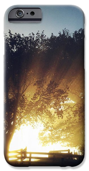 Sun rays iPhone Case by Les Cunliffe