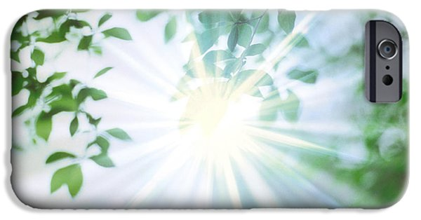 Altered iPhone Cases - Sun Shining Through Leaves, Lens Flare iPhone Case by Panoramic Images
