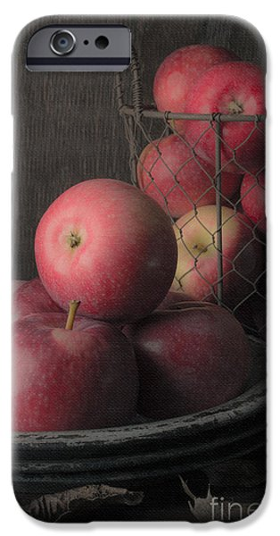 Painter Photographs iPhone Cases - Sun Warmed Apples Still Life iPhone Case by Edward Fielding