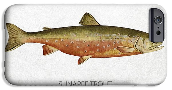 Fresh Water Fish iPhone Cases - Sunapee Trout iPhone Case by Aged Pixel