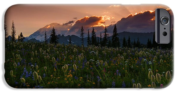 Mt iPhone Cases - Sunbeam Garden iPhone Case by Mike  Dawson