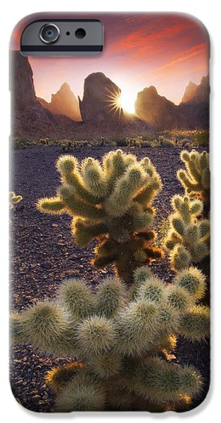 Peter Coskun iPhone Cases - Sunburnt  iPhone Case by Peter Coskun