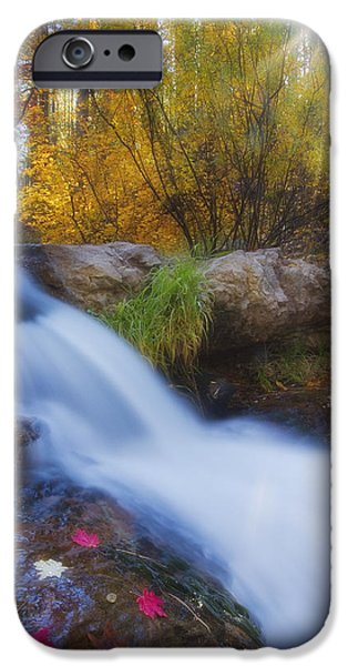Oak Creek iPhone Cases - Sunburst Autumn iPhone Case by Peter Coskun