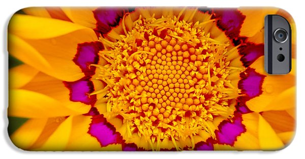 Floral Digital Art Digital Art iPhone Cases - Sunburst Daisy iPhone Case by Bill Caldwell -        ABeautifulSky Photography
