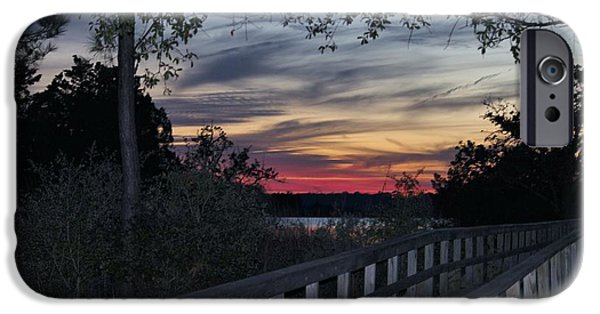 Pathway iPhone Cases - Sundown At The River iPhone Case by Cynthia Guinn