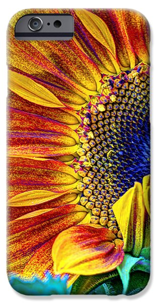 Plant iPhone Cases - Sunflower Abstract iPhone Case by Heidi Smith