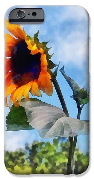 Sunflower Against the Sky iPhone Case by Susan Savad