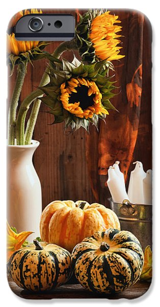 Gourd iPhone Cases - Sunflower and Gourds Still Life iPhone Case by Amanda And Christopher Elwell