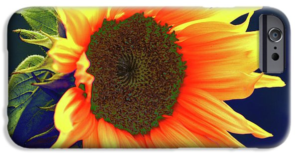 Abstract Sunflower iPhone Cases - Sunflower iPhone Case by Carol Lynch
