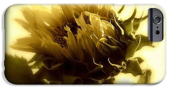 Girasol iPhone Cases - Sunflower - Fare thee well iPhone Case by Janine Riley