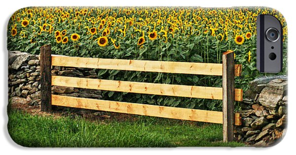 Griswold Ct iPhone Cases - Sunflower Fence iPhone Case by Marcel  J Goetz  Sr