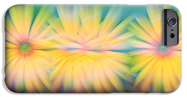 Abstract Sunflower iPhone Cases - Sunflower Garden Abstract iPhone Case by Dan Sproul