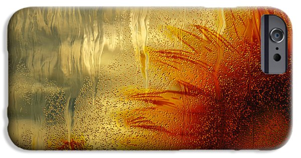 Crops iPhone Cases - Sunflower In The Rain iPhone Case by Jack Zulli