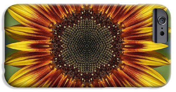 Floral Digital Art Digital Art iPhone Cases - Sunflower Kaleidoscope iPhone Case by Cindi Ressler