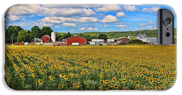 Recently Sold -  - Agriculture iPhone Cases - Sunflower Nirvana 17 iPhone Case by Allen Beatty