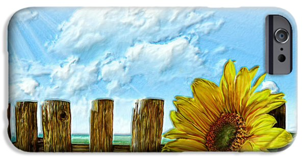 Field. Cloud iPhone Cases - Sunflower on a cool Autumn Day iPhone Case by Bruce Nutting