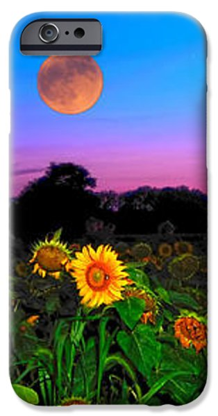 Sunflower Patch and Moon  iPhone Case by Randall Branham