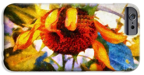 Girasol iPhone Cases - Sunflower Tender iPhone Case by Janine Riley