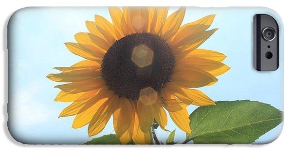 Lotus iPhone Cases - Sunflower with Flare 1 iPhone Case by Lotus
