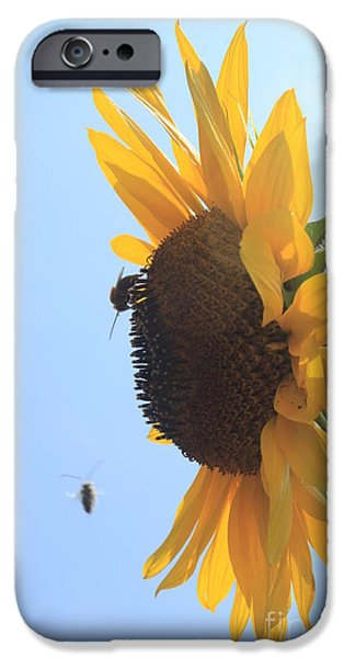 Lotus iPhone Cases - Sunflower with Visitors iPhone Case by Lotus