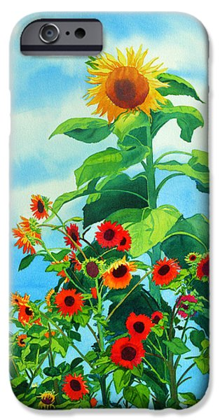 Sunflower Paintings iPhone Cases - Sunflowers 2014 iPhone Case by Mary Helmreich