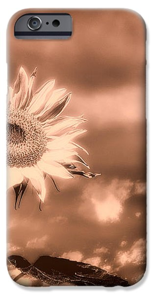 Sunflowers iPhone Case by Bob Orsillo