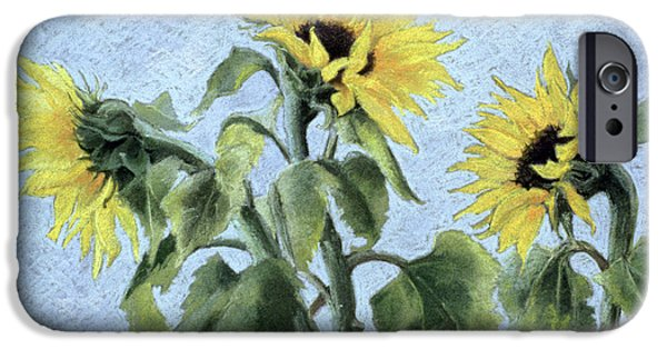 Plant Pastels iPhone Cases - Sunflowers iPhone Case by Cristiana Angelini