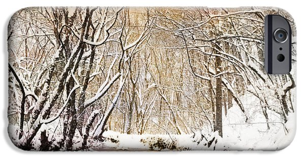 Winter Scene iPhone Cases - Sunkissed Winter Creek iPhone Case by Jai Johnson