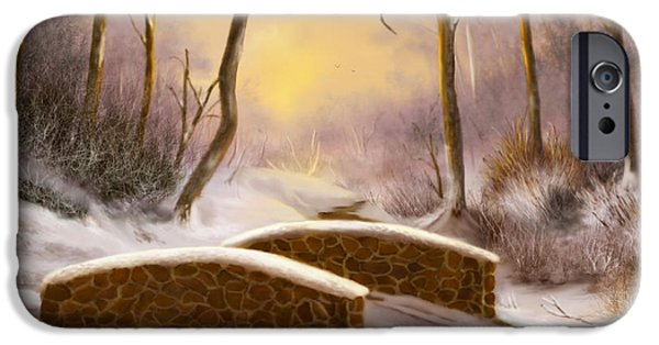 Oak Creek iPhone Cases - Sunlight in Winter iPhone Case by Sena Wilson