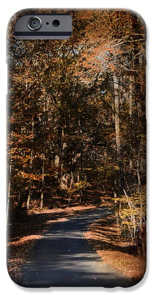 Autumn Scenes iPhone Cases - Sunlit Autumn Path iPhone Case by Jai Johnson