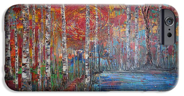 Pathway iPhone Cases - Sunlit Birch Pathway iPhone Case by Jacqueline Athmann
