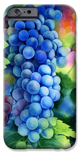 Harvest Time iPhone Cases - Sunlit Grapes iPhone Case by Hailey E Herrera