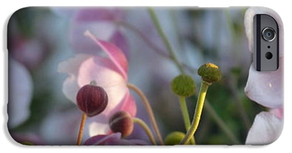 Floral Digital Art Digital Art iPhone Cases - Sunny Anemones iPhone Case by France Laliberte