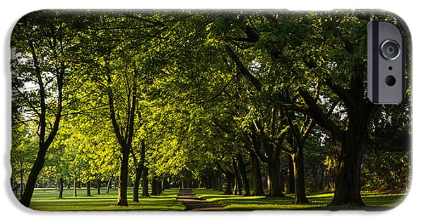 Pathway iPhone Cases - Sunny August Afternoon in the Park iPhone Case by Georgia Mizuleva