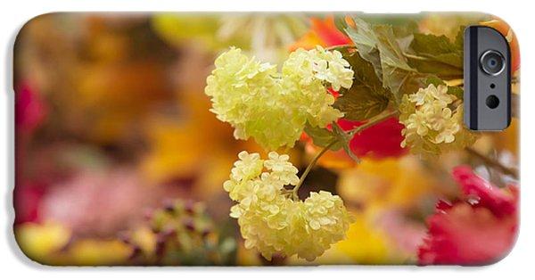Flower Design Photographs iPhone Cases - Sunny Mood. Amsterdam Flower Market iPhone Case by Jenny Rainbow